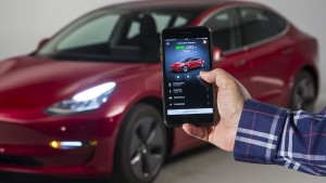 Tesla Car Owners