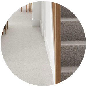 3-Carpet-cleaning