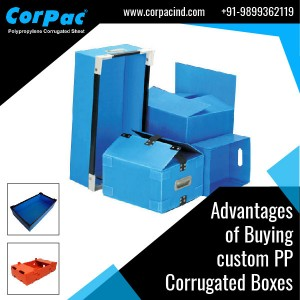 Advantages of Buying custom PP Corrugated Boxes classified