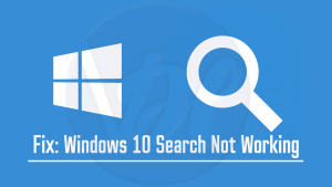 Windows Search Not Working'
