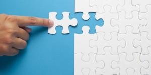 Data Integration Consultant Managment