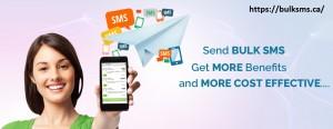 best bulk sms service provider in india 4