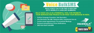 best bulk sms service provider in india 1