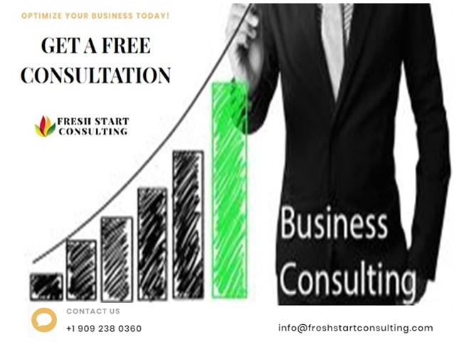 Startup Business Consulting Services