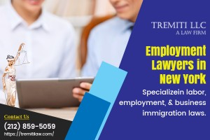 Do You Need Help Of New York Employment Lawyers?