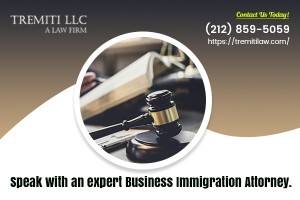 What Do Business Immigration Attorneys Do?