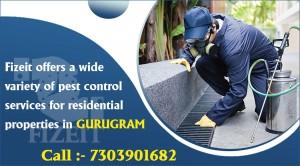 pest control services in Delhi