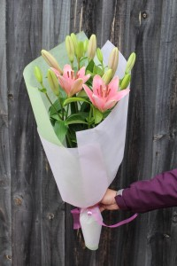 Pink Oriental Lilies Delivery Melbourne