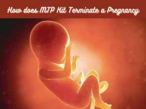 How does MTP Kit Terminate a Pregnancy