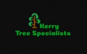 Kerry Tree Specialists