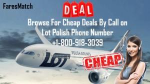 Lot-Polish1-FM-TP-28-8