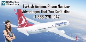 Turkish-Blog-800No-25-8