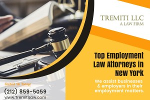 Employment Law Attorney New York