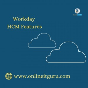 Workday HCM Features