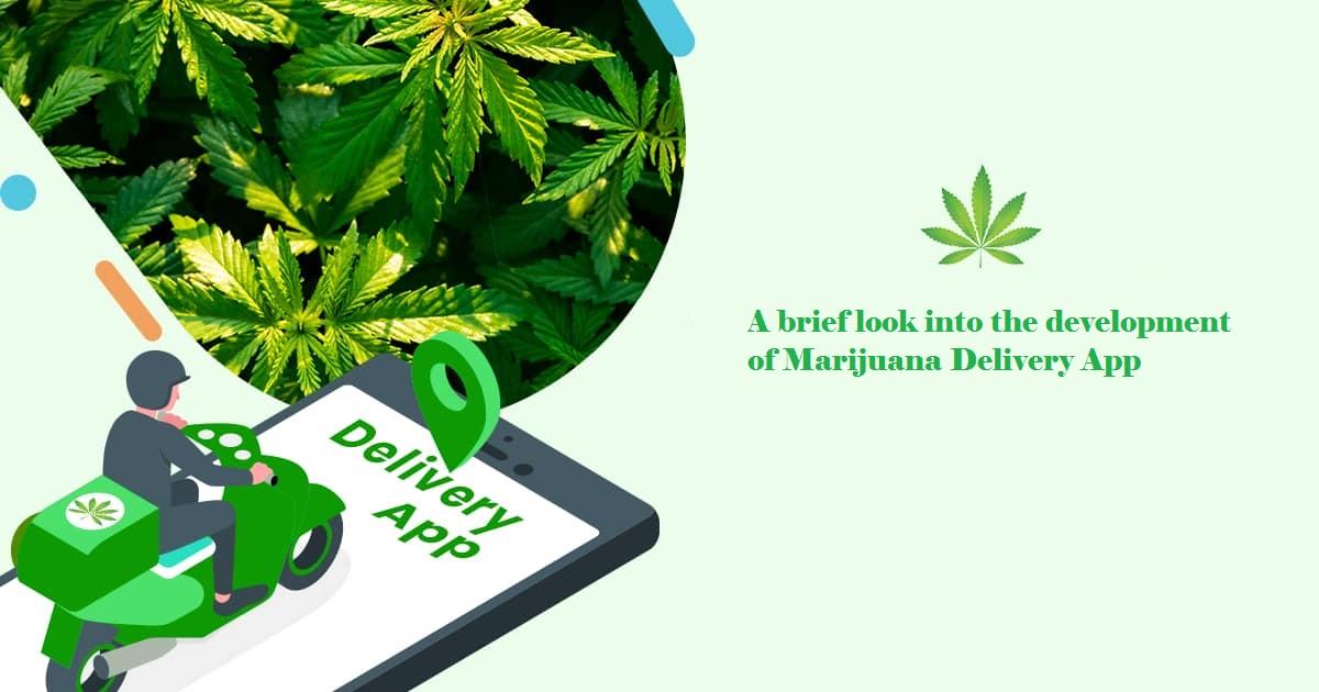 start-a-medical-marijuana-delivery-service