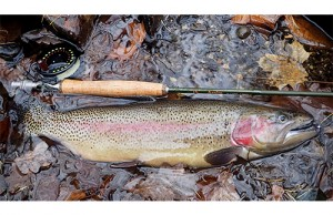 ABC-Top advantages of fly fishing closeouts