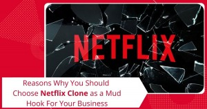 Reasons why you should choose Netflix Clone as a mud hook for your business (1)