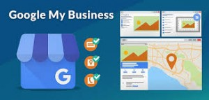 google my business anagement services