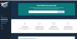 Website Security Assessment