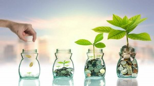 Types of Equity Funds You Can Invest Your Money