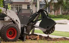 tree stump removal companies in canada