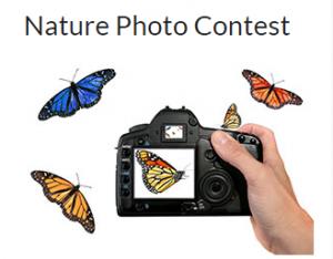Nature-Photo-Contest