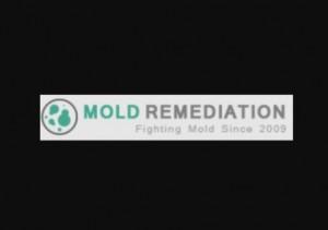 Caribbean Mold Removal Remediation Virgin Islands