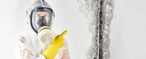 can-mold-come-back-after-remediation