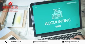 How Does Accounting and Taxation Help for Business Growth
