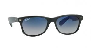 Ray Ban Matte Polarised Sunglasses